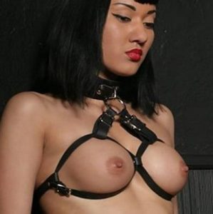 Full-Adjustable-Collar-Breast-Harness-1