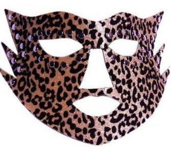 Red-Leopard-Mask-Cat-a-1